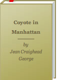 Book Coyote in Manhattan